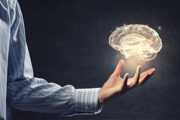 Fitzy smart brein